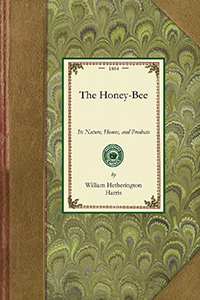 The Honey-Bee