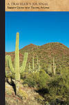 Saguaro Cactus near Tucson, Arizona: A Traveler's Journal