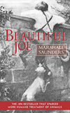 Beautiful Joe (Paperback)