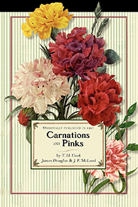 Carnations and Pinks